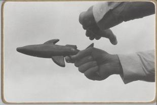 Shark (Rychlopalná vykrývací poloha)