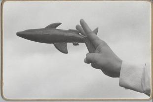 Shark (Poloha pro boj se sníženou viditelností)