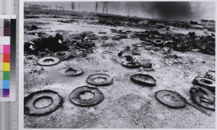 Scattered Oil Barrels Lie in Pieces